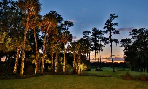 Golden Ocala – Astounding Golf Course Views
